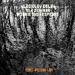 vladislav delay - sly dunbar - robbie shakespeare - 500-push-up