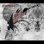 strange2 - ciclos