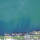 pointe du lac (julien lheuillier) - ep 1 & 2