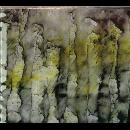 anla courtis - das synthetische mischgewebe   - squenun