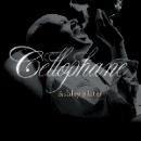 ashley slater - cellophane