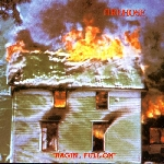 firehose (mike watt / minutemen) - ragin', full-on