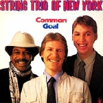 string trio of new york (bang - emery - lindberg) - common goal