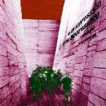 blonde redhead - in an expression of the inexpressible