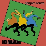 parquet courts - wide awake! (ltd. deluxe ed)