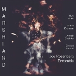 joe rosenberg ensemble - marshland