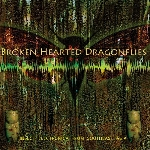 martine tucker - broken hearted dragonflies: insect electronica from southeast asia