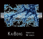 kaiborg (david borgo - jeff kaiser) - harvesting metadata