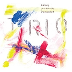 kui dong - larry polansky - christian wolff - trio