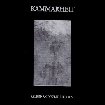 kammarheit - asleep and well hidden