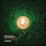 midlake - am i going insane (record store day 2011 release)