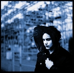 jack white (white stripes) - blunderbuss