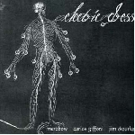 merzbow / giffoni / o'rourke - electric dress