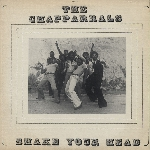 the chapparrals - shake your head