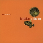 tortoise + the ex - in the fishtank