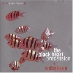 the black heart procession + solbakken - in the fishtank 11