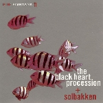 the black heart procession + solbakken - in the fishtank 11 (silver vinyl) (rsd 2014)
