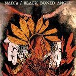 nadja/black boned angel - nadja/black boned angel