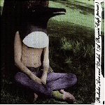 penguin cafe orchestra - prelude airs & yodels