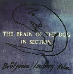 peter brötzmann - fred lonberg-holm - the brain of the dog