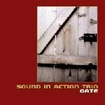 sound in action trio (vandermark-barry-daisy) - gate