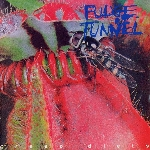 fudge tunnel - creep diets