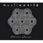 muslimgauze - islamic songs