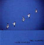 nate wooley - the almond