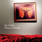 joe colley - waste of songs