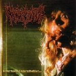 regurgitate - effortless regurgitation