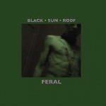 black sun roof (matthew bower) - feral