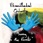 vibracathedral orchestra - tuning to the rooster