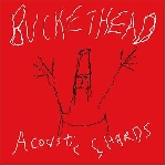 buckethead - acoustic shards