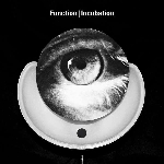 function (silent servant) - incubation