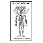 macronympha - amplified humans