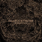 seabuckthorn - in nightfall