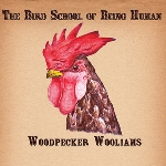 woodpecker wooliams - the bird school of being human