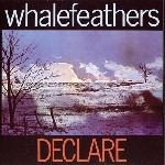 whalefeathers - declare (180 gr.)