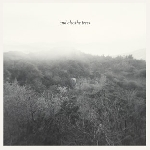 and also the trees - s/t