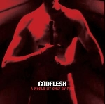 godflesh - a world only lit by fire (red vinyl)