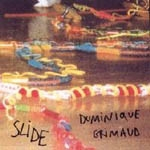 dominique grimaud - slide