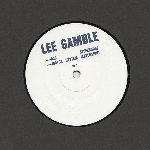 lee gamble - b23 steelhouse / motor system (extension)