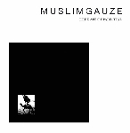 muslimgauze - the rape of palestine (ltd. 200)