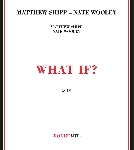 matthew shipp - nate wooley - what if ?