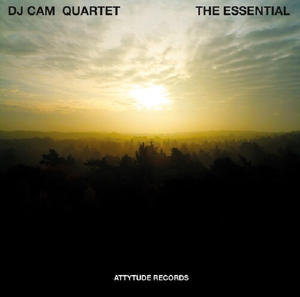 dj cam quartet - the essential (rsd 2020)