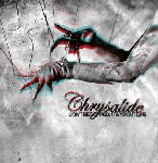chrysalide - don't be scared it's about life