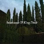 solanaceae & king dude - split