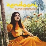 v/a - zendooni - funk, psychedelia and pop from the iranian pre-revolution generation