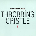 throbbing gristle - in the shadow of the sun