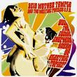 acid mothers temple & the melting paraiso u.f.o - does the cosmic shepherd dream of electric tapirs